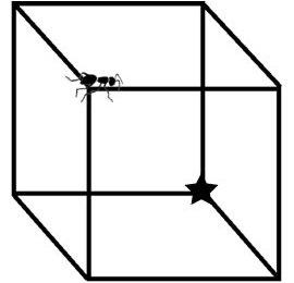 Puzzle Nekst 1 '14-'15